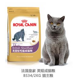 法国皇家 英短成猫粮BS34/2KG 猫主粮