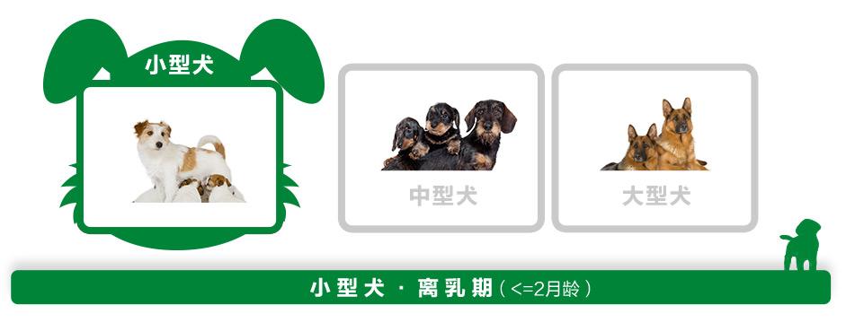 小 型 犬 · 离 乳 期(<=2月龄)